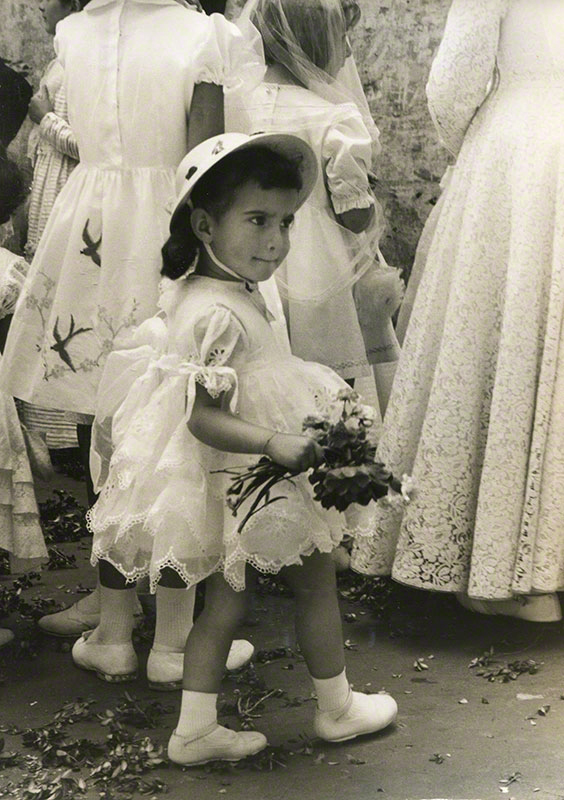 Young flower girl captured amidst other females in a wedding party
