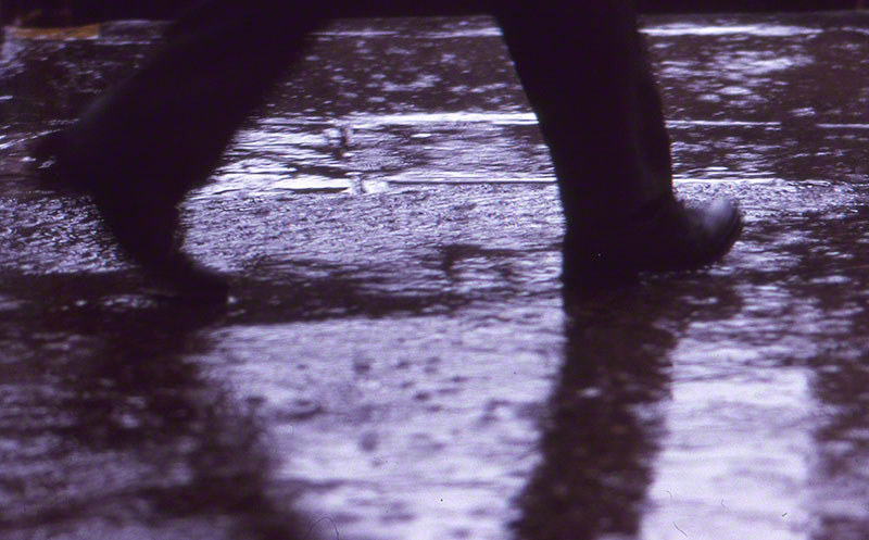 Pair of legs in motion reflected in rain soaked pavement