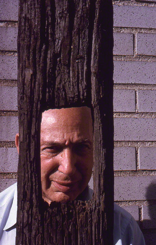 André Kertész through driftwood.