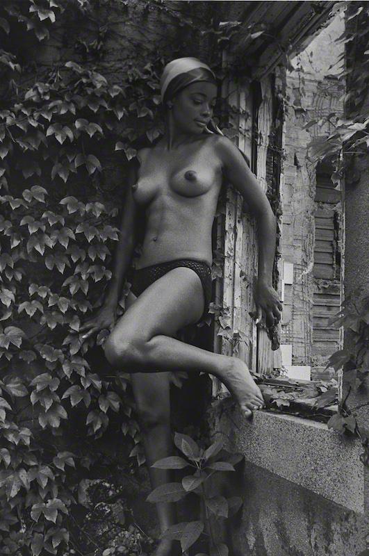 Garden Beauty II (1963)