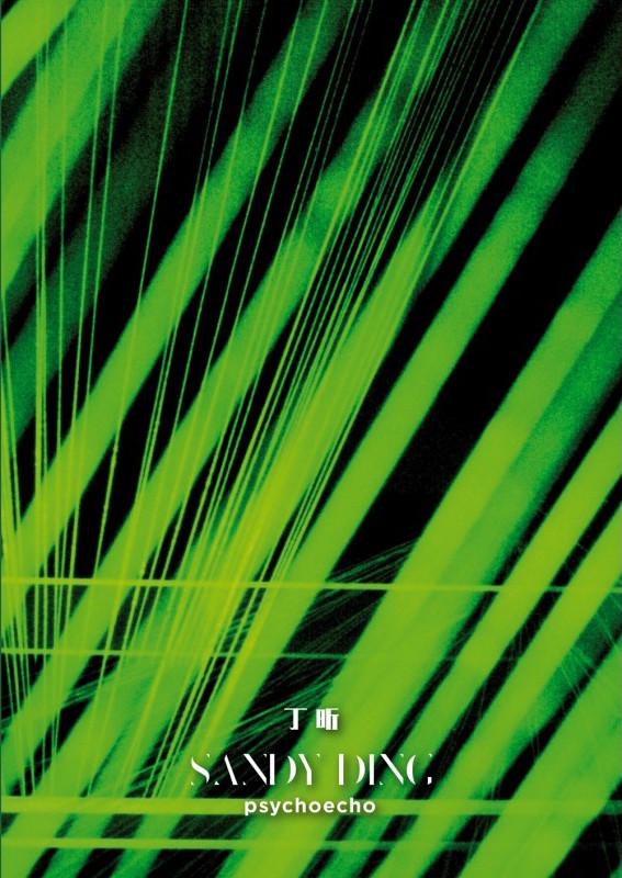 Sandy Ding Cover.jpg