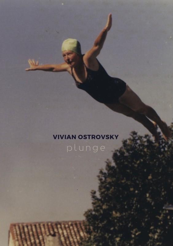 vivian-ostrovsky-plunge cover.jpg