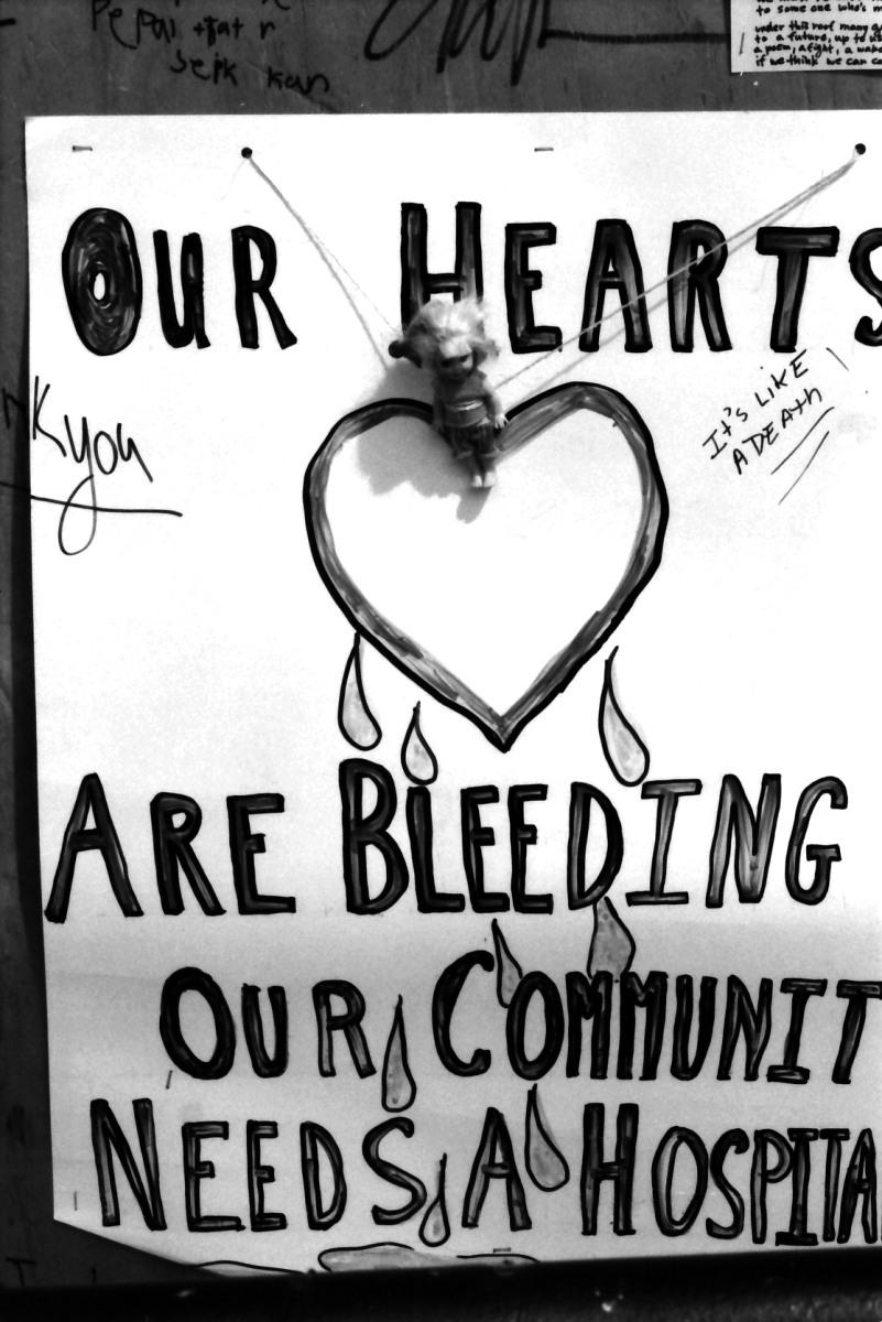 bleeding heart.JPG