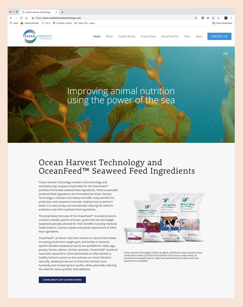 OHT Homepage.jpg