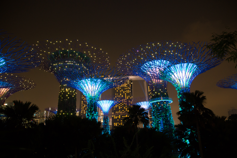 AMX_Singapore (155 of 212).jpg
