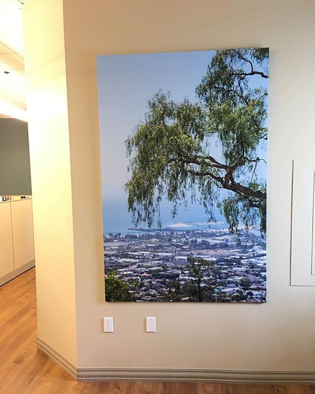 Transforming office spaces.. 25 prints makes a big difference. • • • • • #santabarbara #montecito #designer #interior #decor #goleta #seesb #carpinteria #californialife #graphicdesign #homedecor #californialiving #creative #californiadreaming #decoration #modern #santaynez #camarillo #furniture #ojai #bellaitalia #interiors #archilovers #sunshinestate #minimal #graphic #sketch #building #photos #beraldodesign