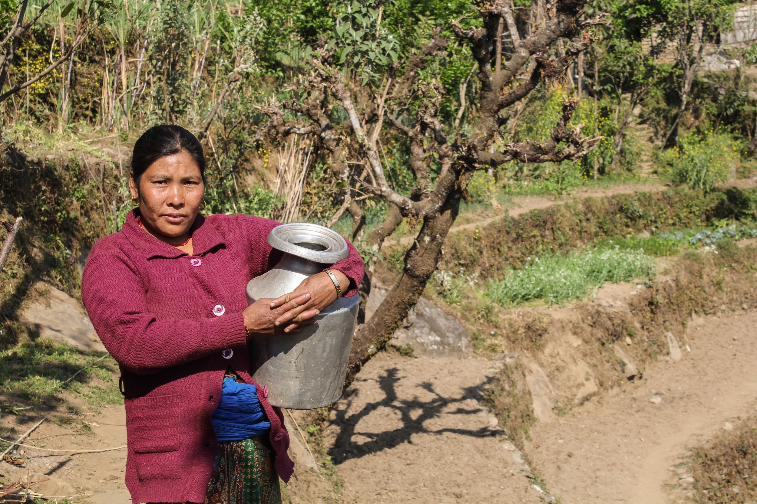 UMN is also supporting Nepalis in helping regain their livelihoods. Kalimaya Tamang received a goat for her women's group to use to earn money and her family is currently working to regrow the crops on their plot of land - Photo courtesy of Ramesh Man Maharjan