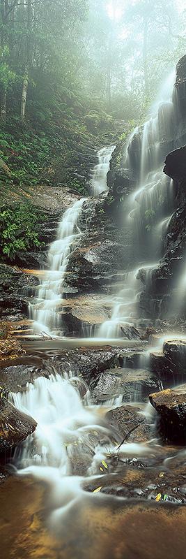 Natures-Veil1.jpg