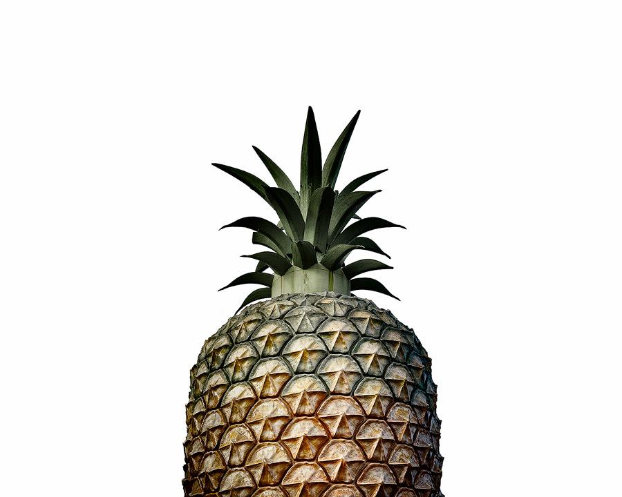 JasonRound_Pineapple.jpg