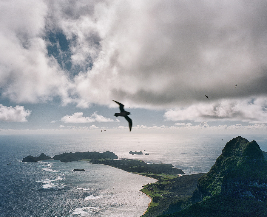 Lord Howe Jason Round 3680-09-copy.jpg