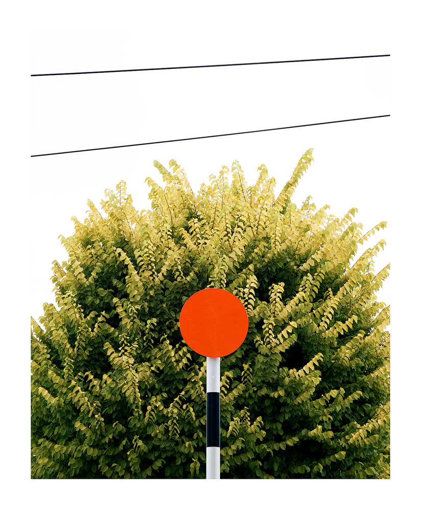These striped pedestrian crossing poles are unique to New Zealand (I think), but it took me a while to find a suitable background for one.