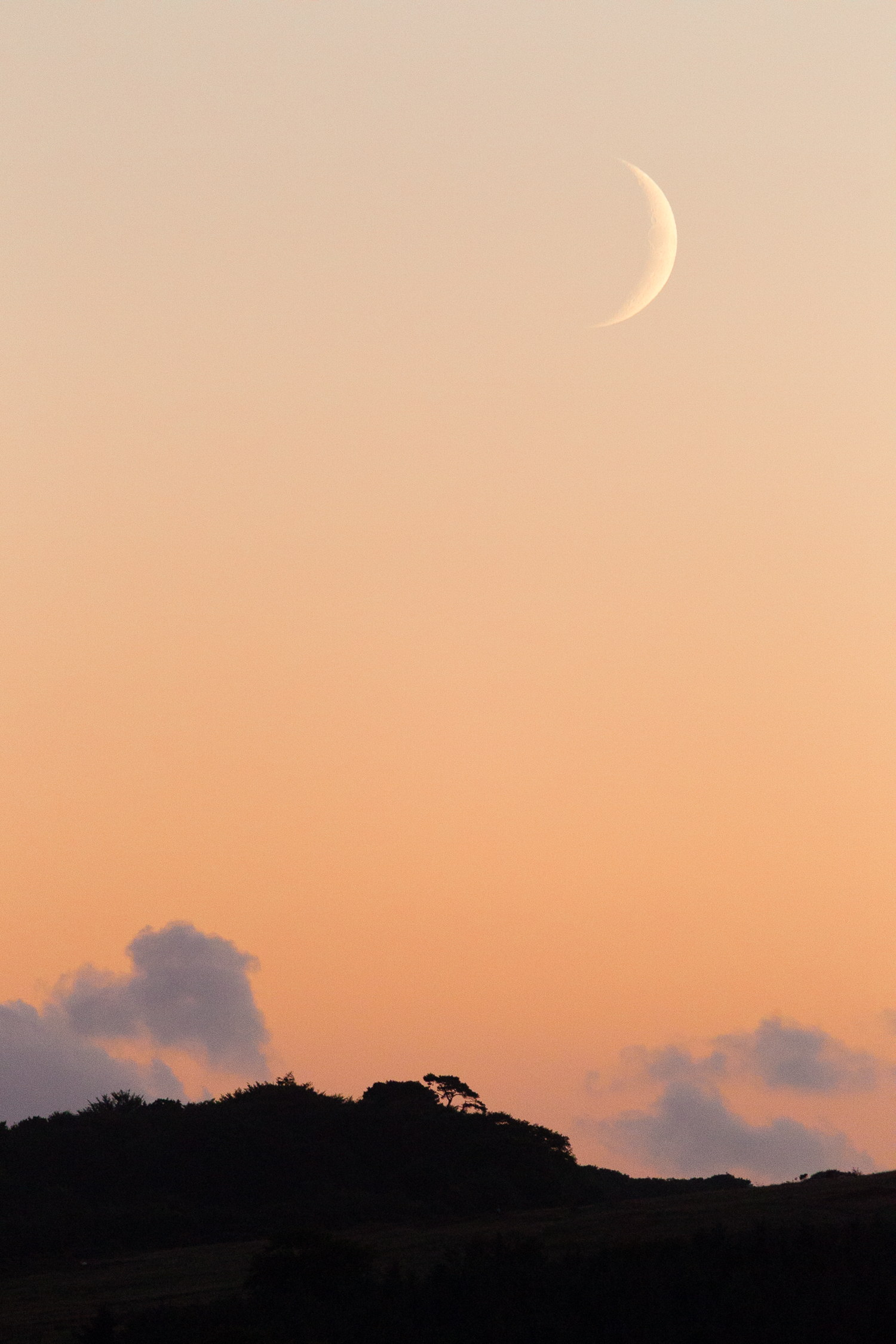 Sunset and Moon.jpg