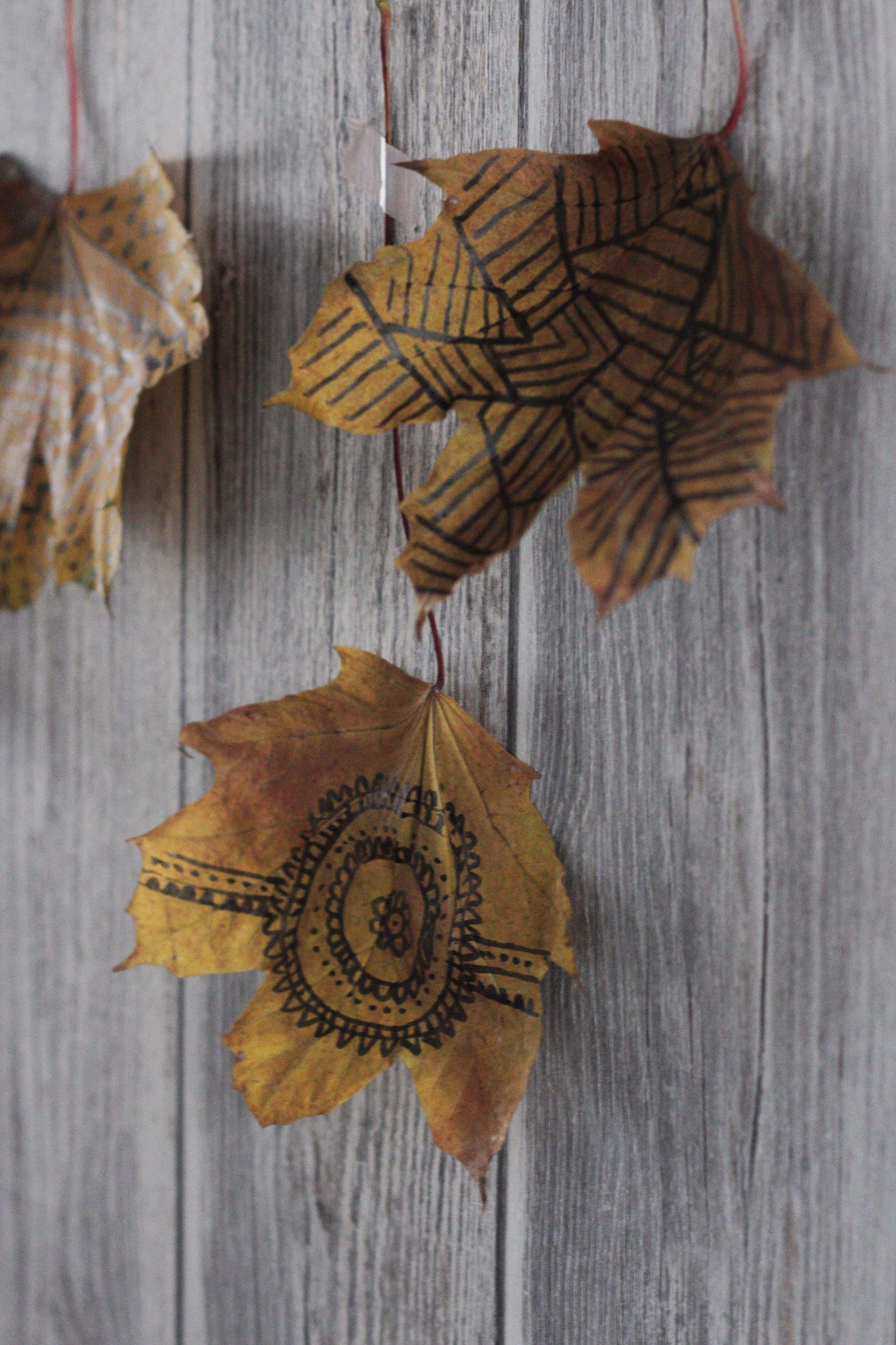 doodle on leaves, tutorial by www.hestershandmadehome.com