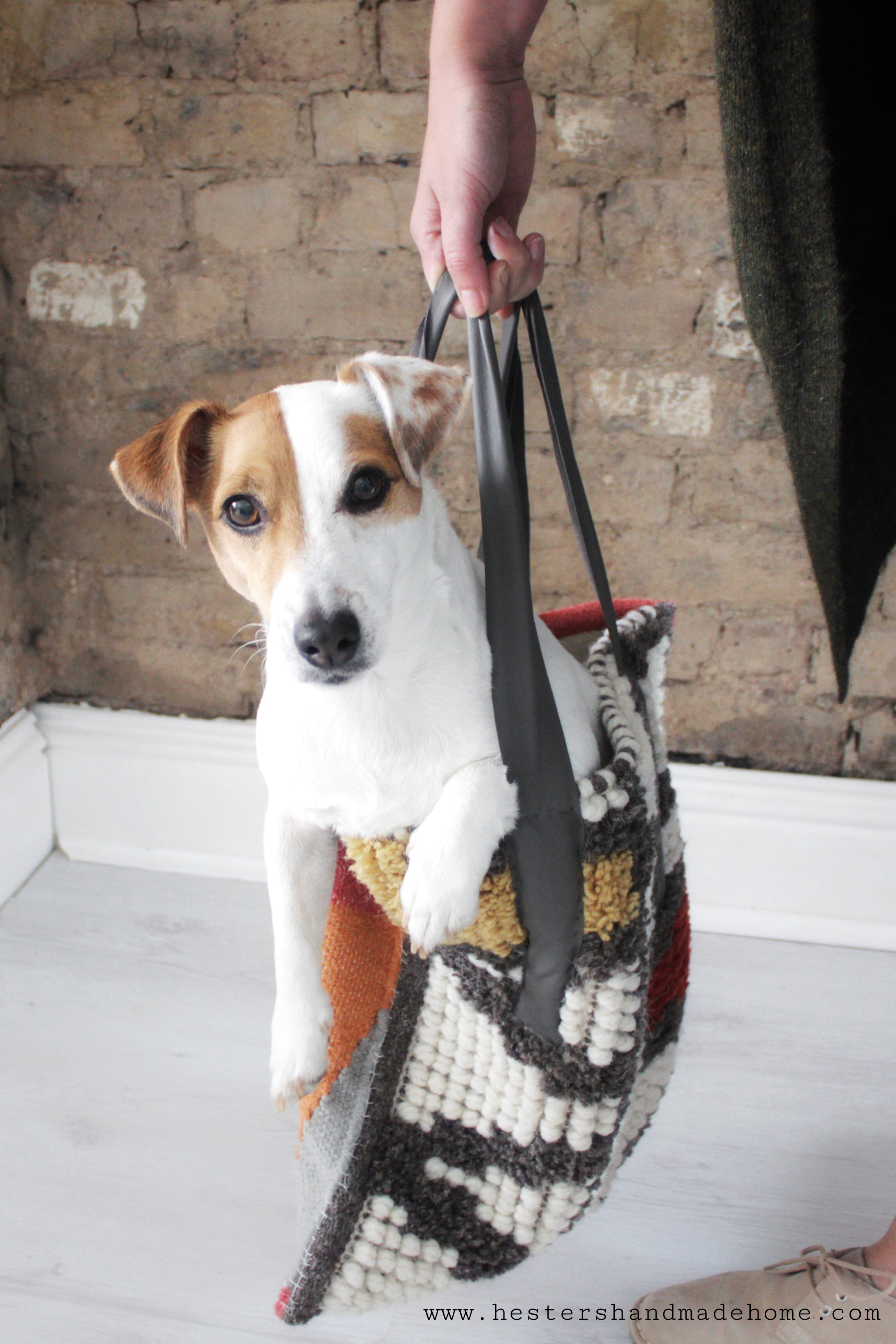 Carpet bag tutorial, dog not included :) www.hestershandmadehome.com
