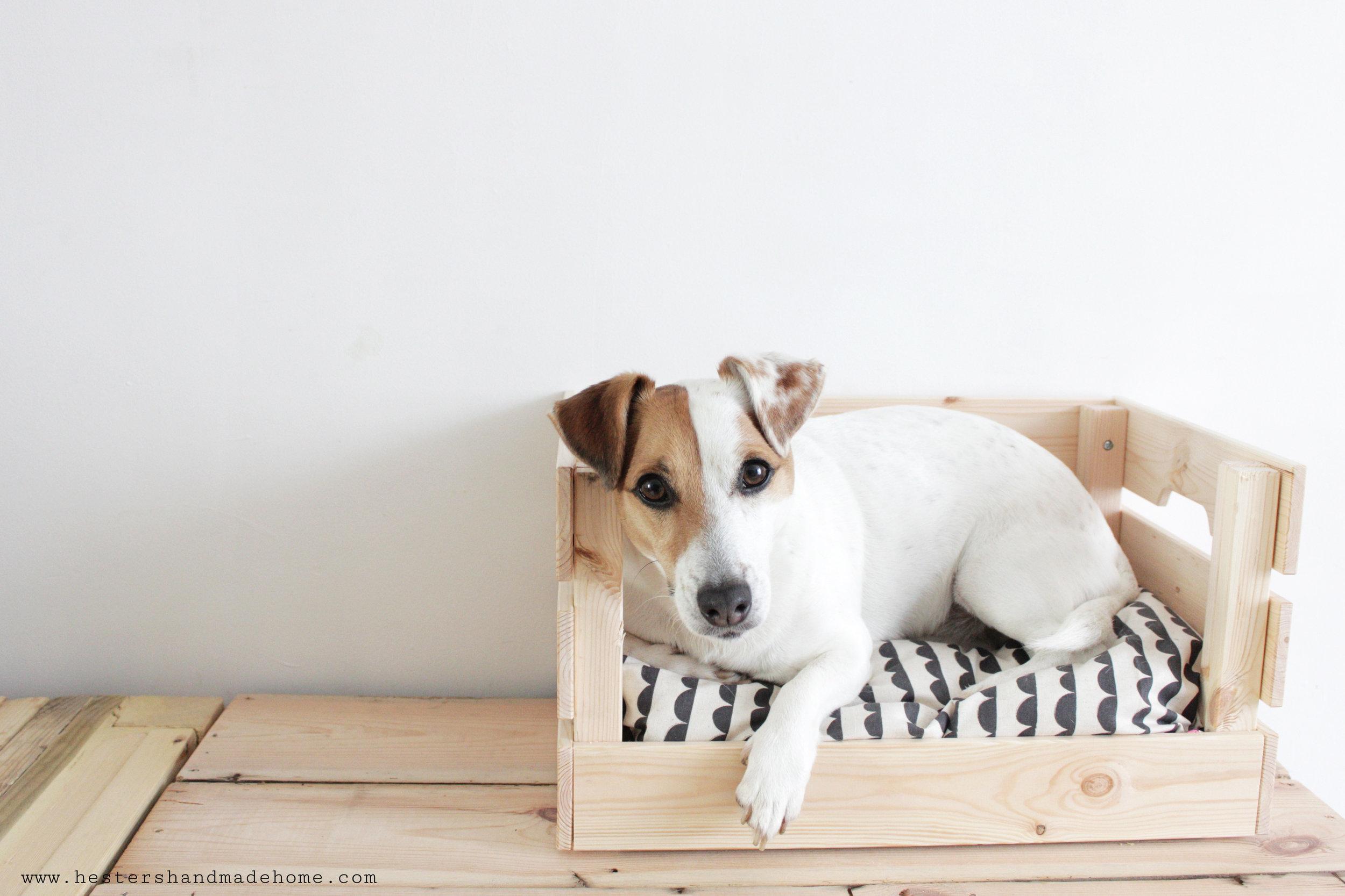 Ikea hack dog bed by www.hestershandmadehome.com