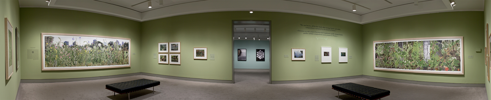 Installation of Once Upon A Forest,  diptych, 2010, The National Gallery of Canada
