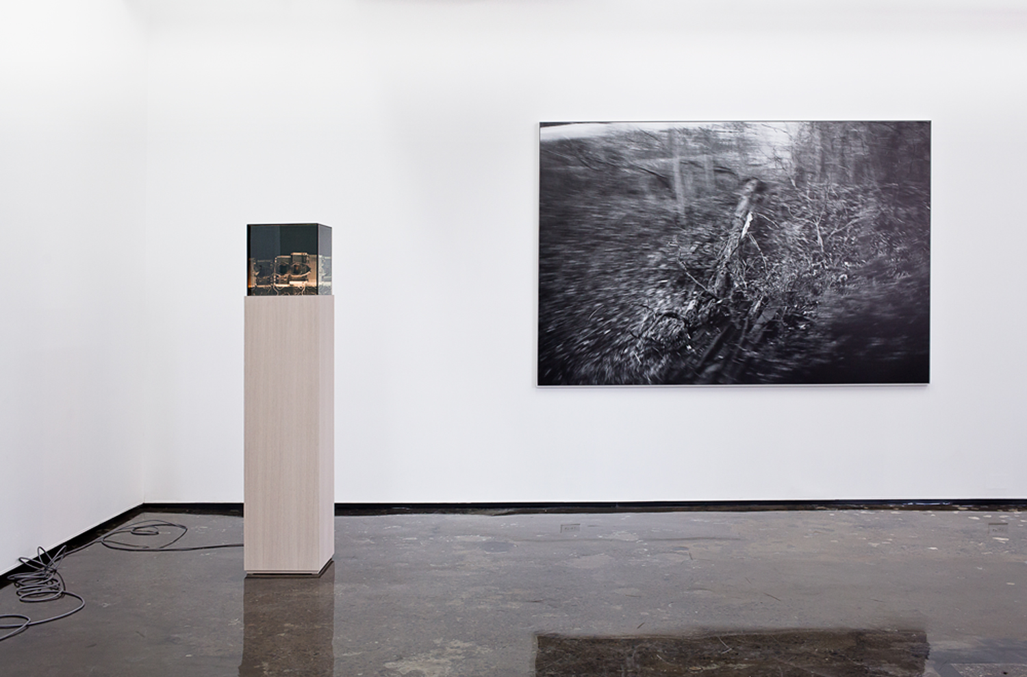 Andrew Wright, 'Untitled Photographic Pictures' at Patrick Mikhail Montreal