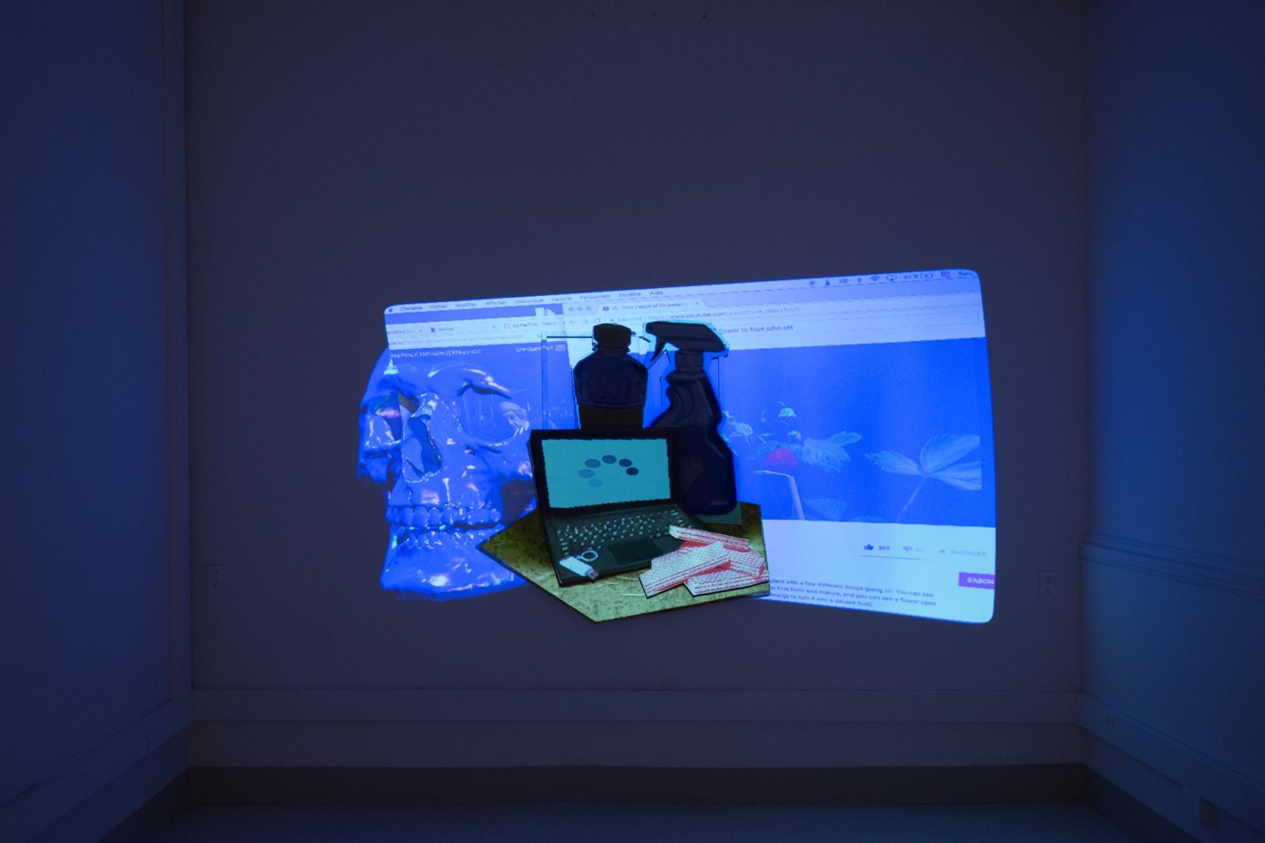 Zoltan Veevaete,  Synthetic Futilities  ,multi-media installation, 2017