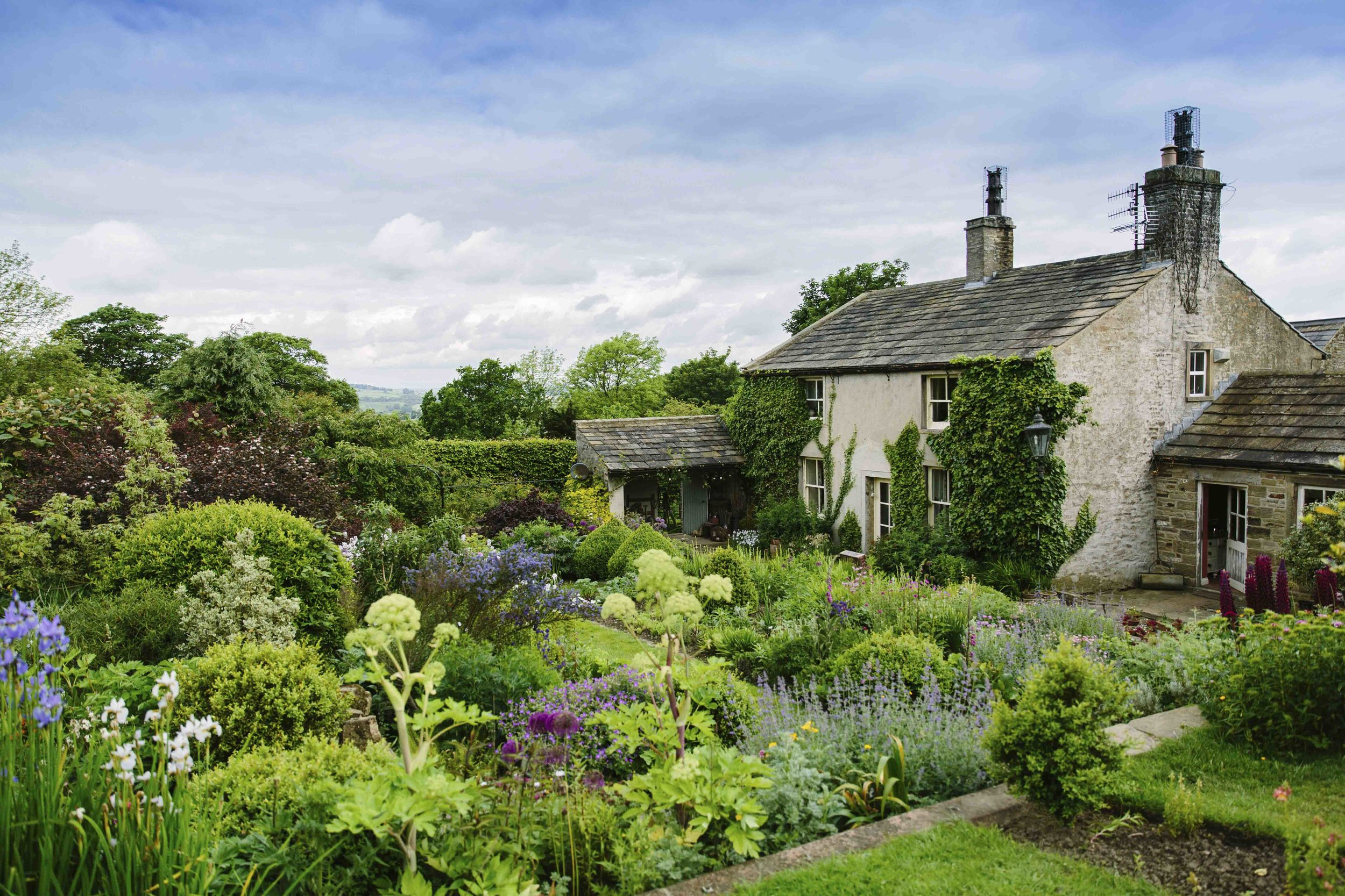Yorkshire_Dales_Flower_Company_06.jpg