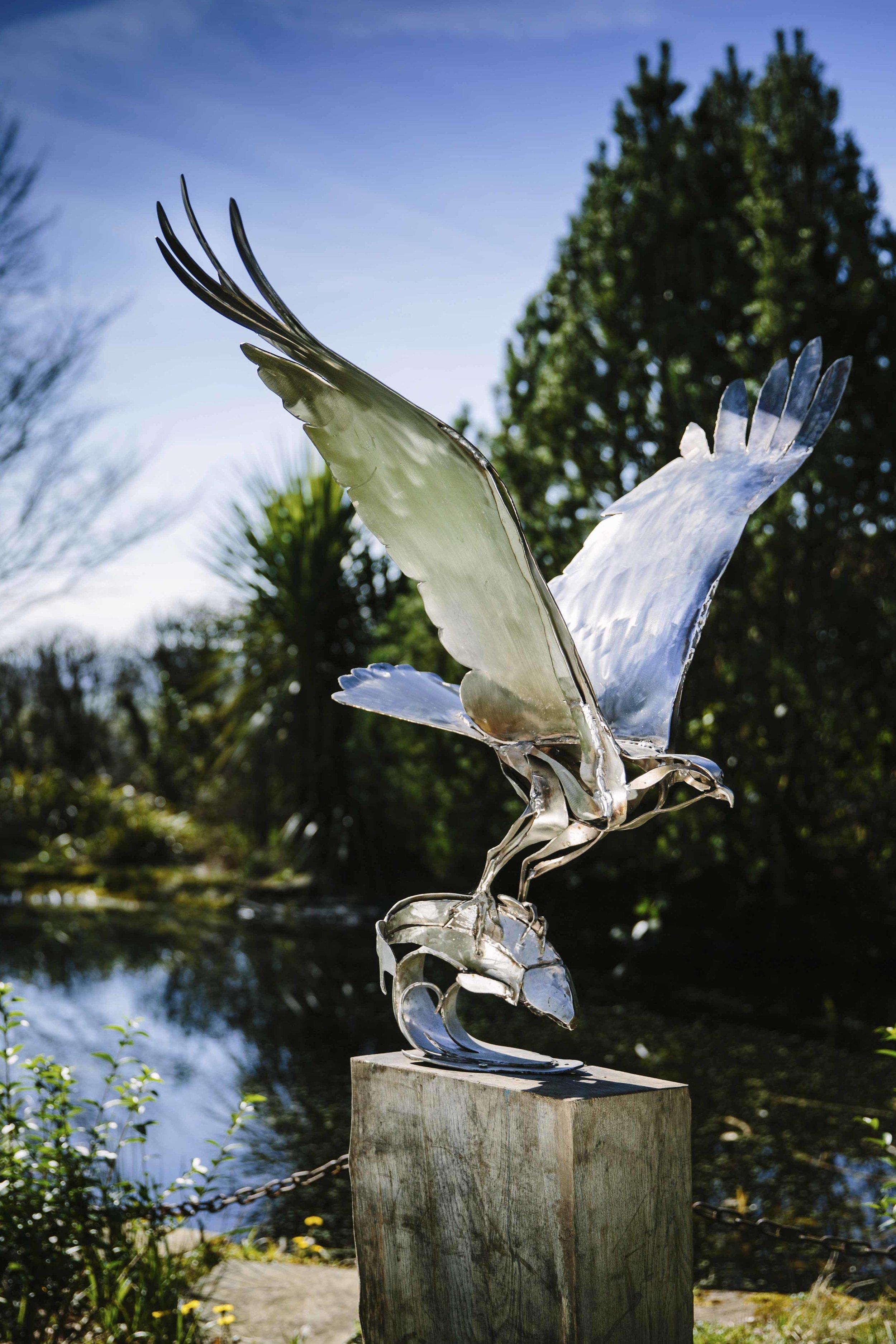 Clare_Bigger_Sculpture_Osprey01.jpg