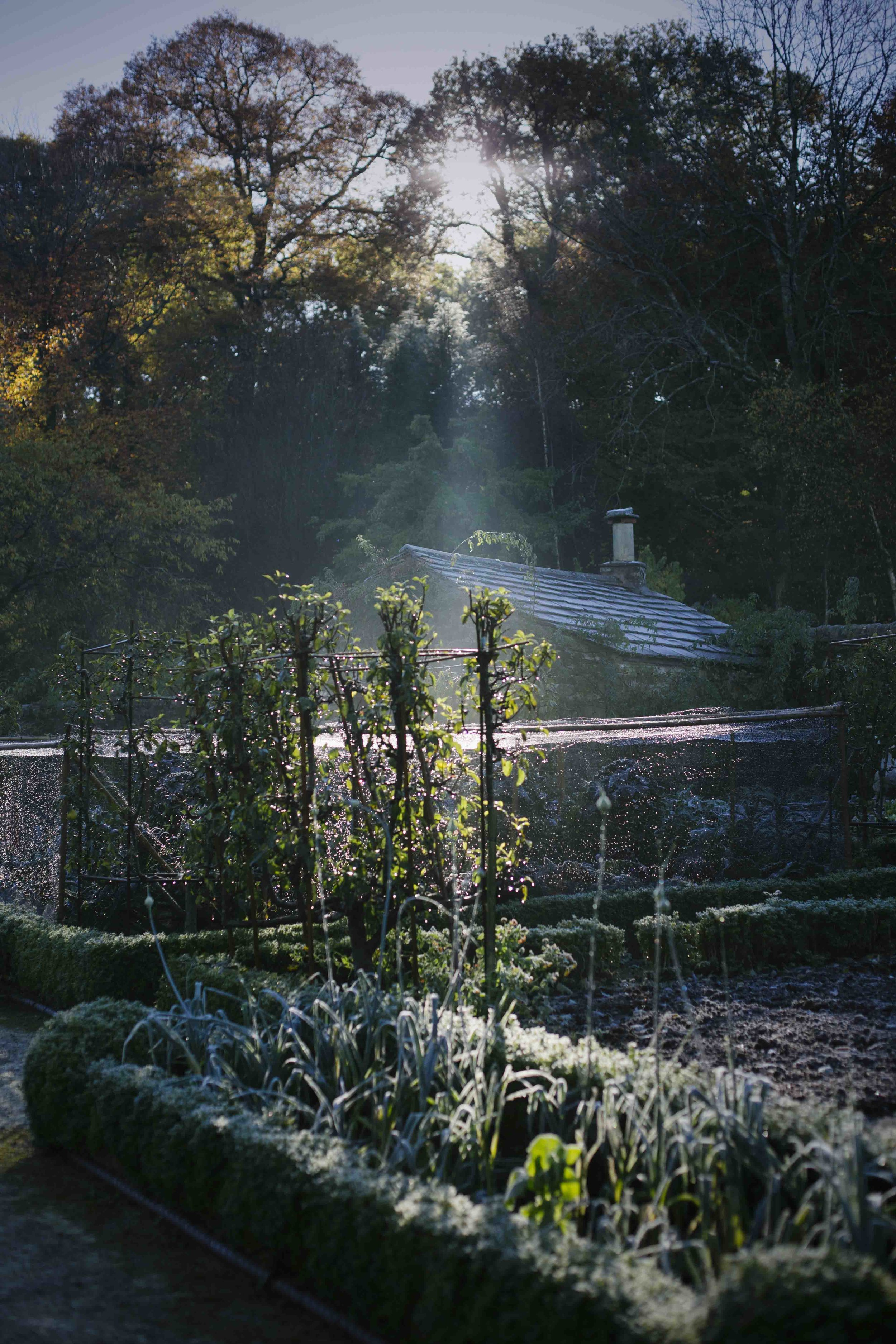 Gresgarth_Autumn_16_16.JPG