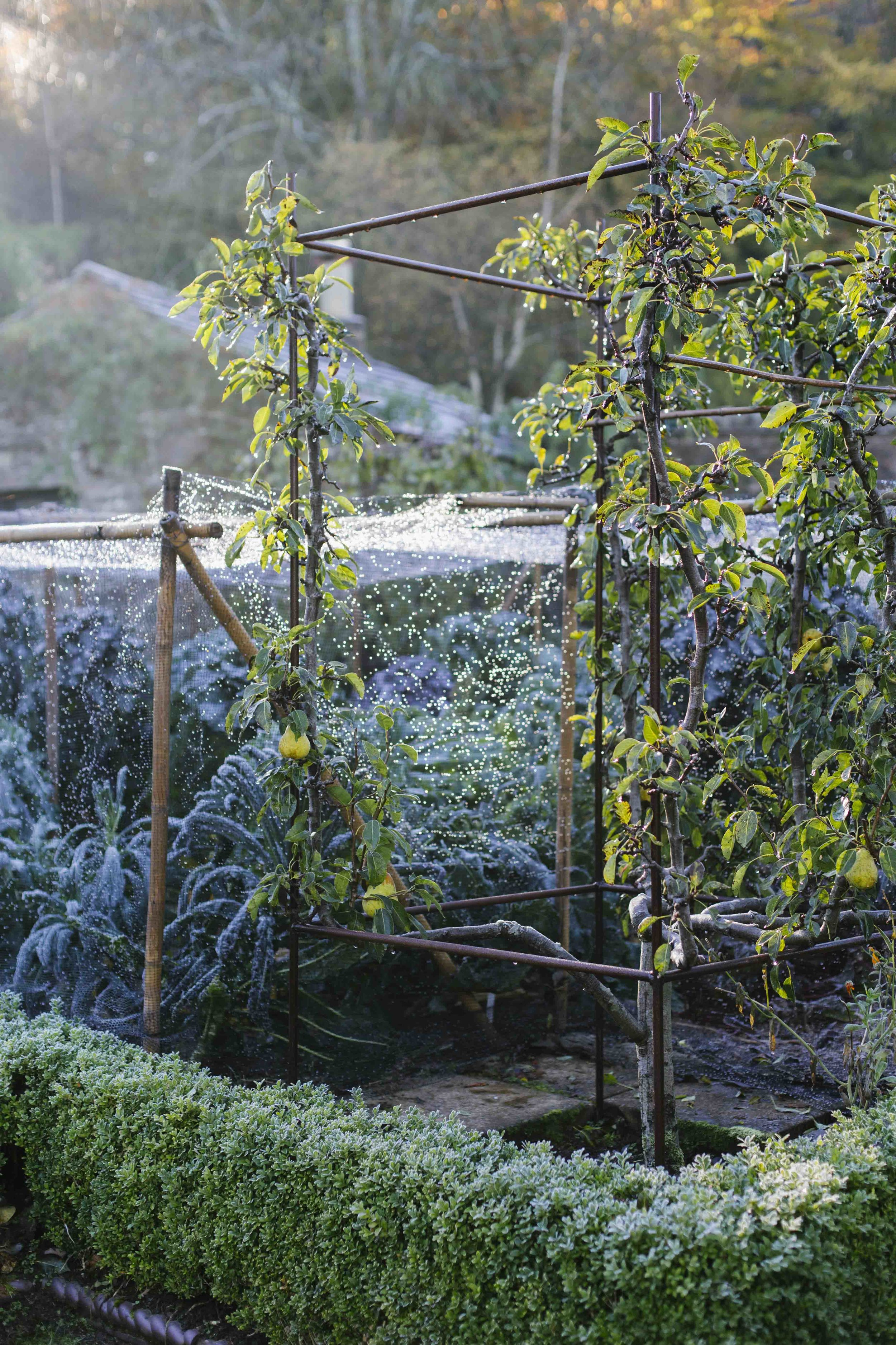 Gresgarth_Autumn_18_18.JPG