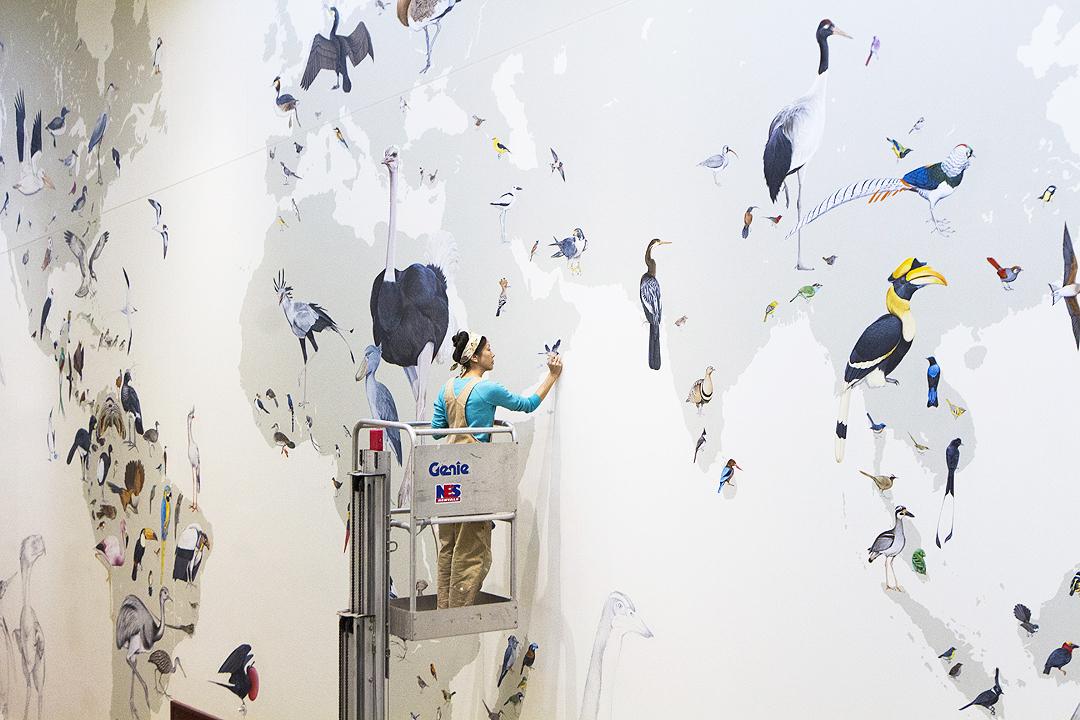 Wall of Birds_PC_Shailee Shah.jpg