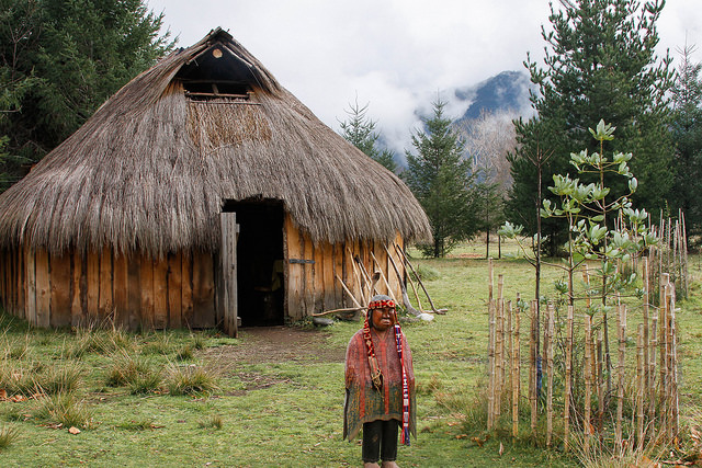 Ruca, gathering place for Mapuche indigenous of Chile.