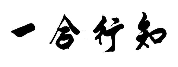 martial arts aikido requirements