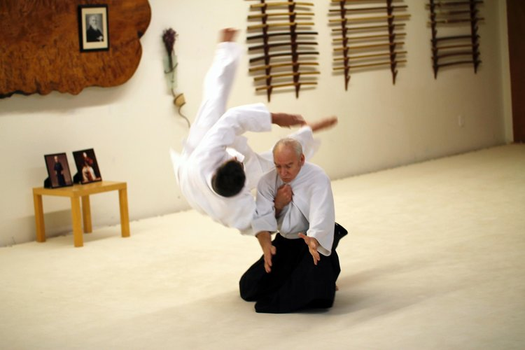 Daito Ryy martial arts seminar Tennessee