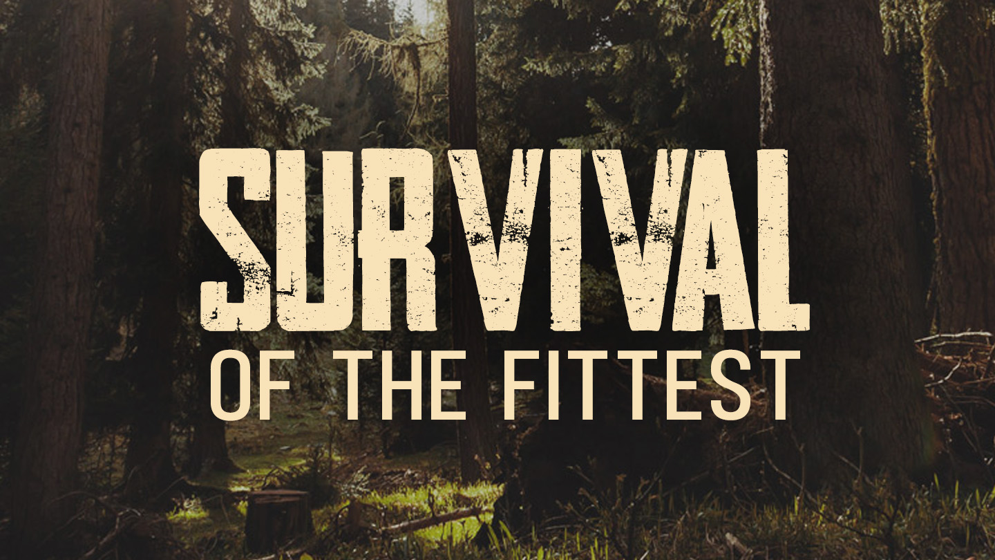 Survival of the Fittest (YouVersion).jpg