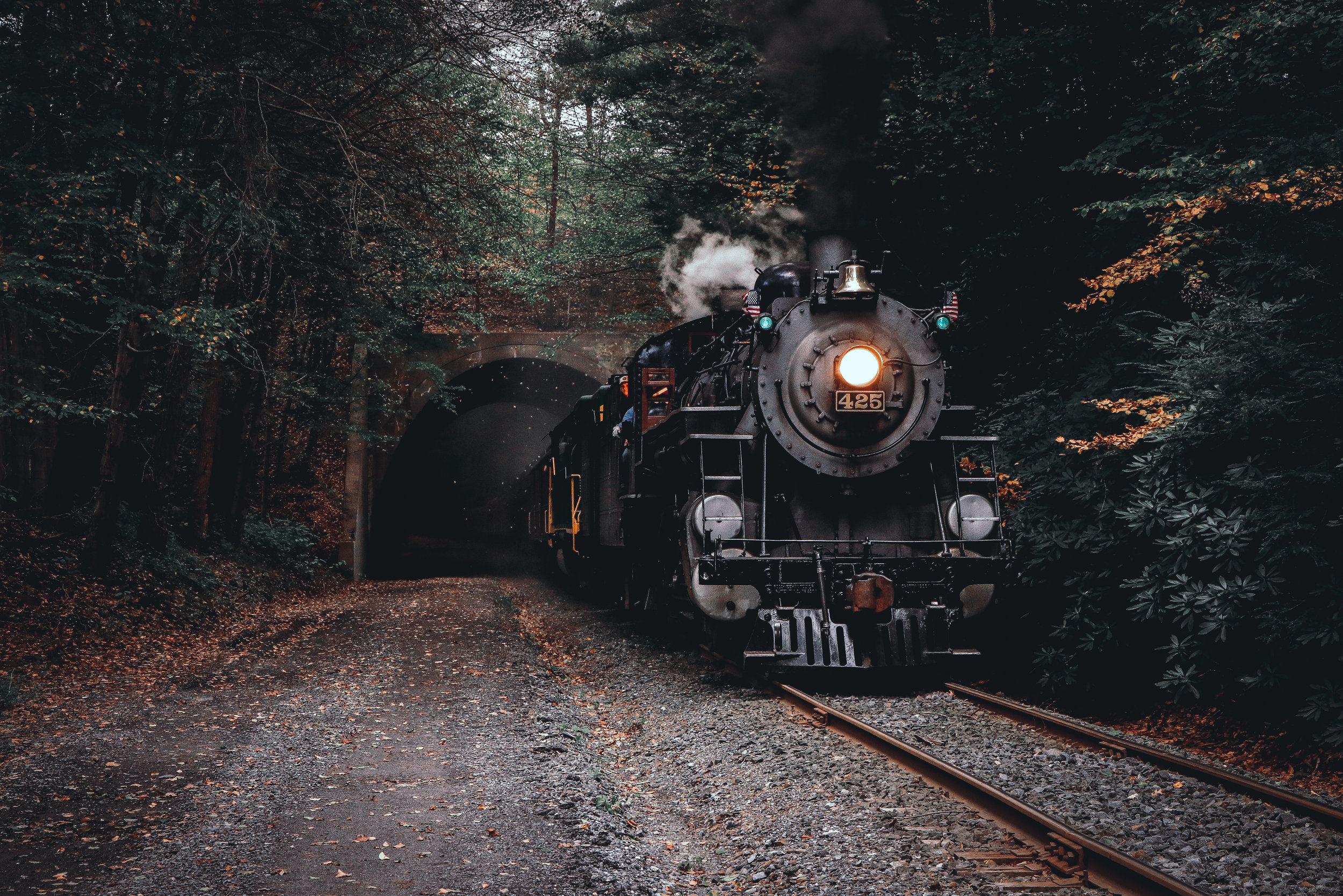 425 Tunnel.jpg
