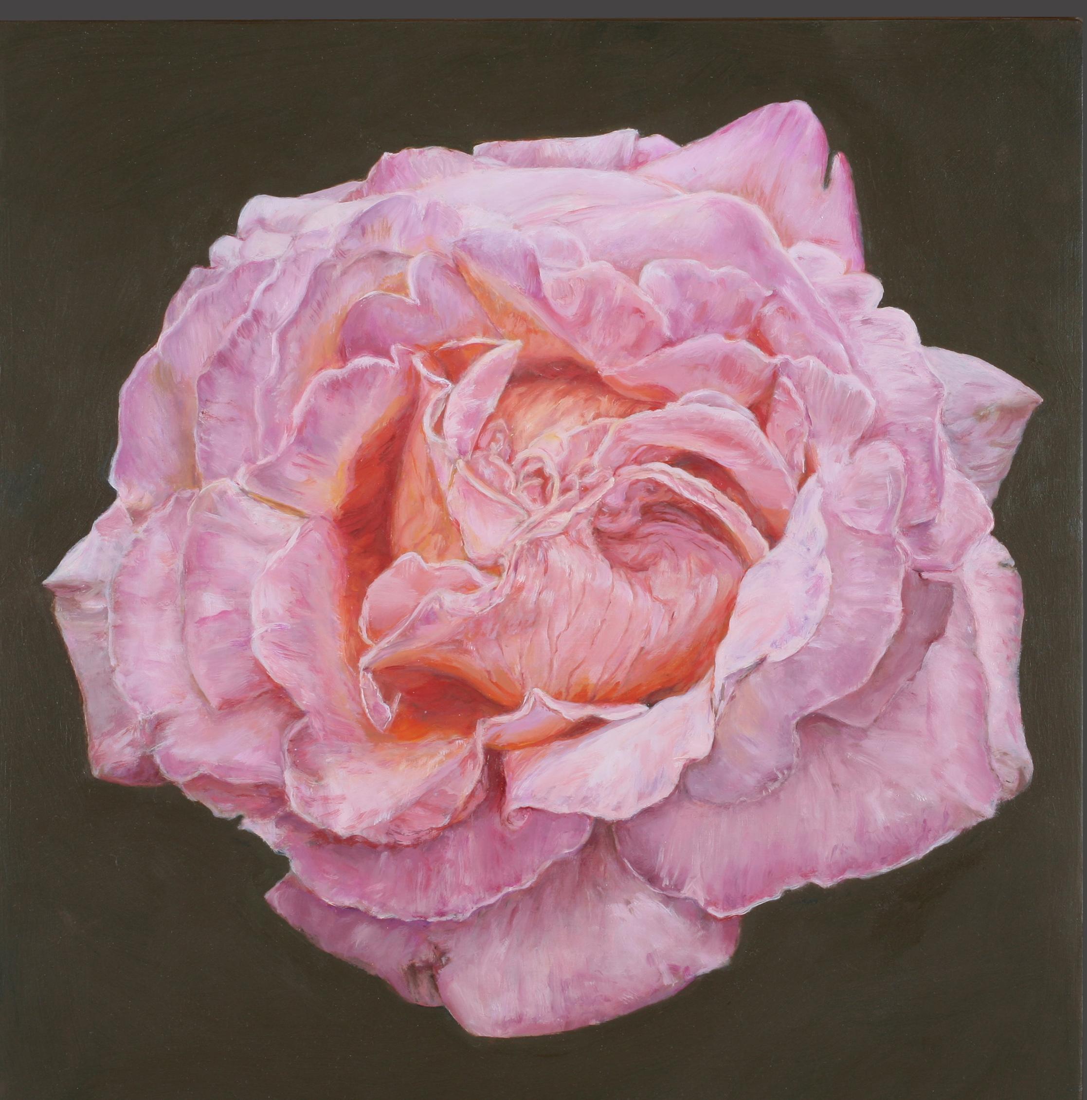 Rose #6