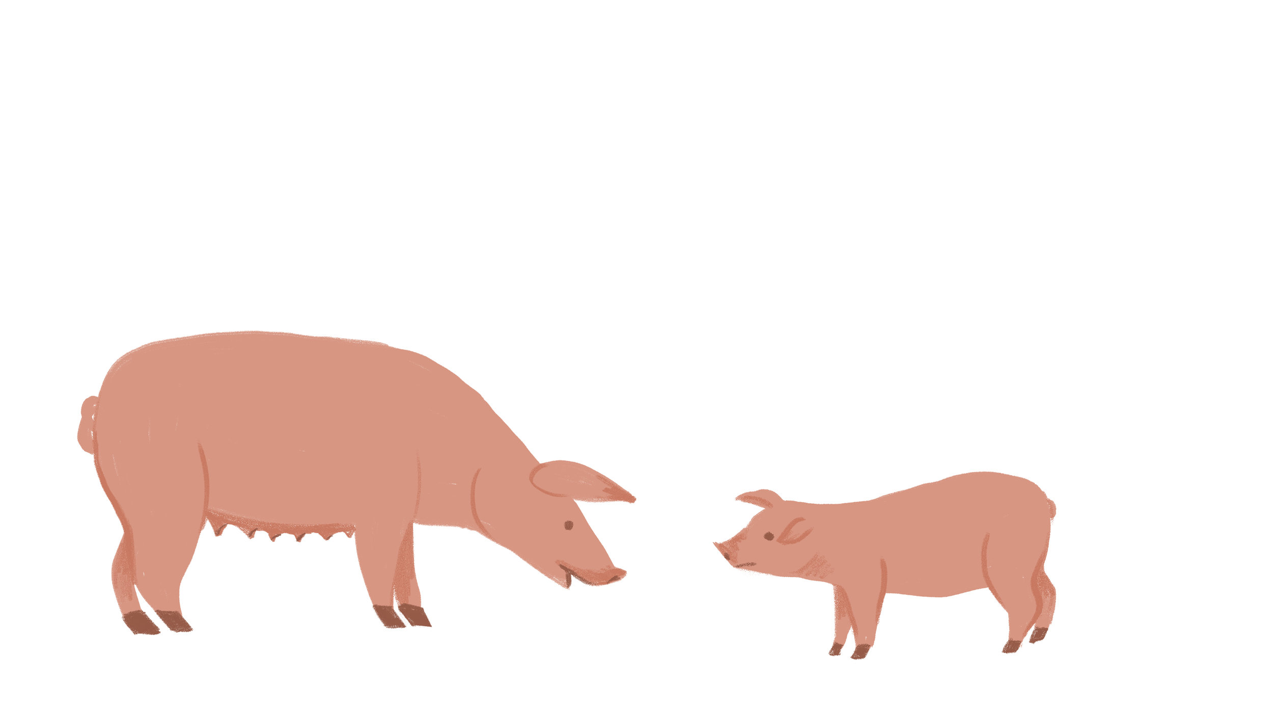 Pig and Piglet copy.jpg