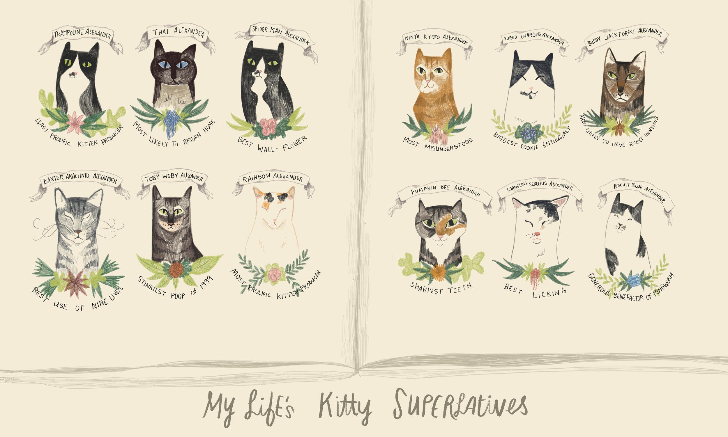 Kitty Superlatives.jpg