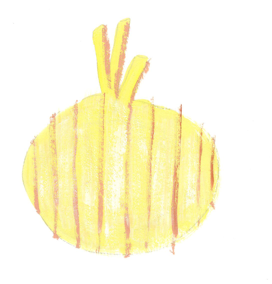 onion copy.jpg