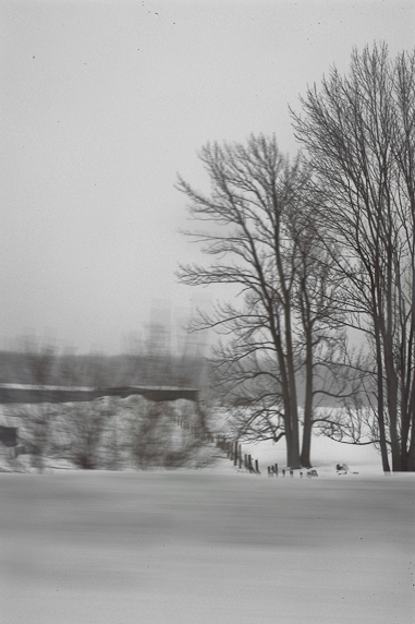WinterWonderland_7.JPG