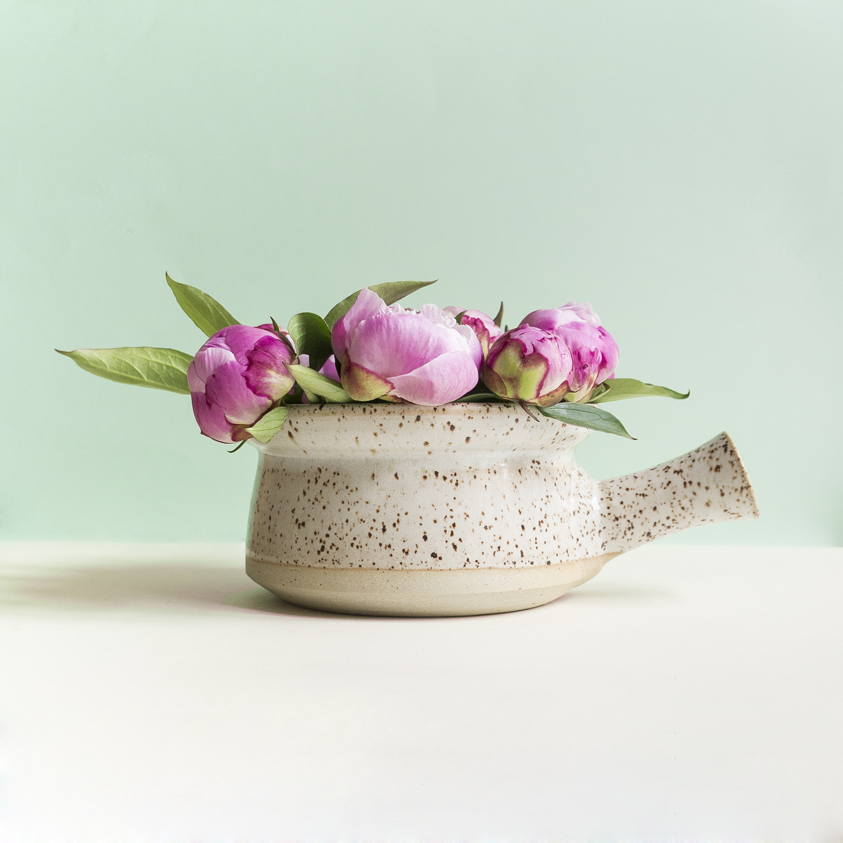 The classic midcentury terrine pot. With fancy speckles. So on fashion point..