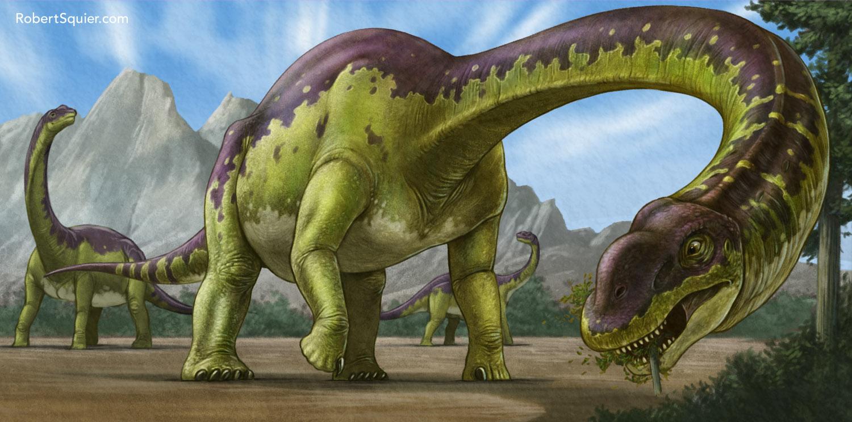 squier_savannasaurus.jpg