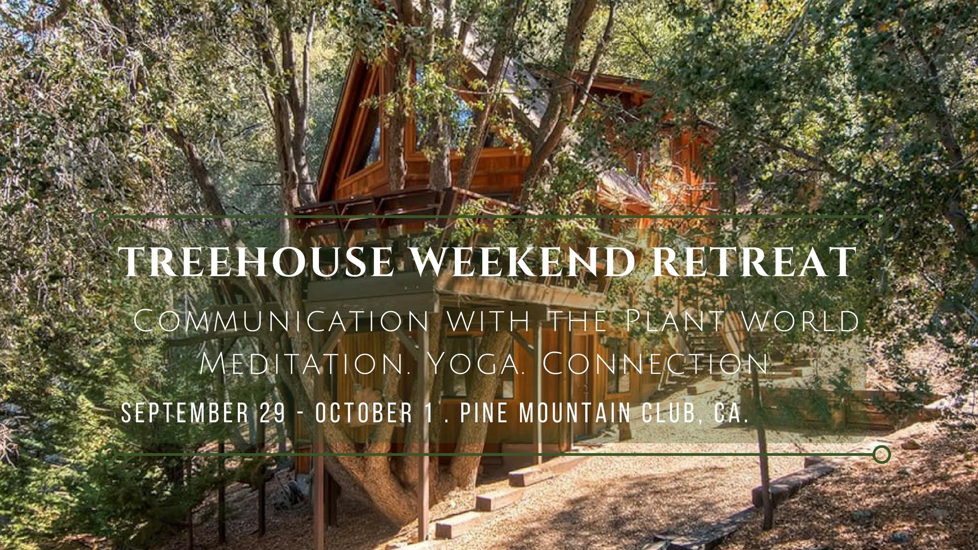 Treehouse Weekend Retreat