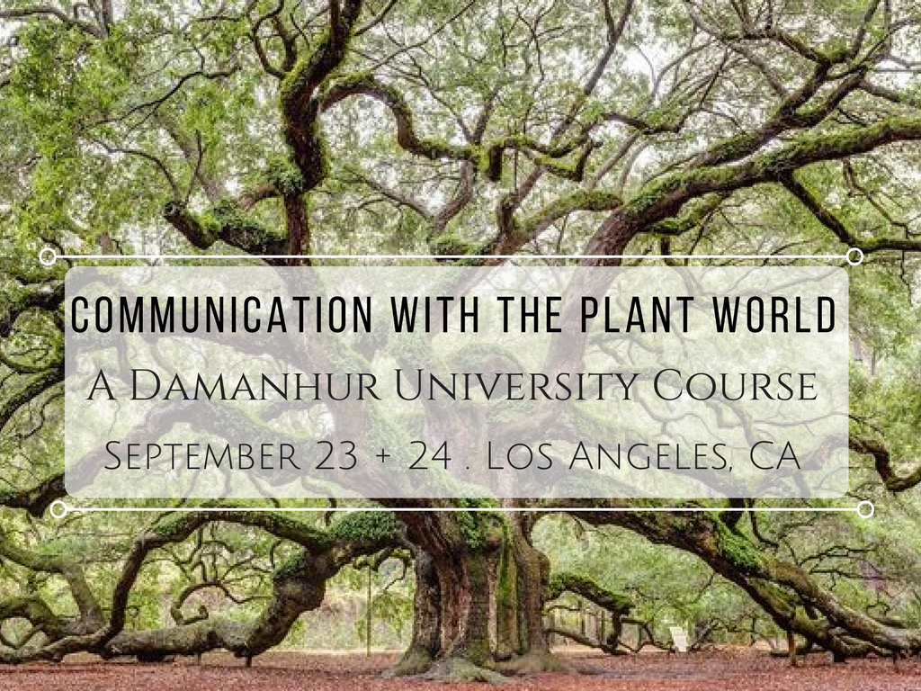 communication with the plant world course