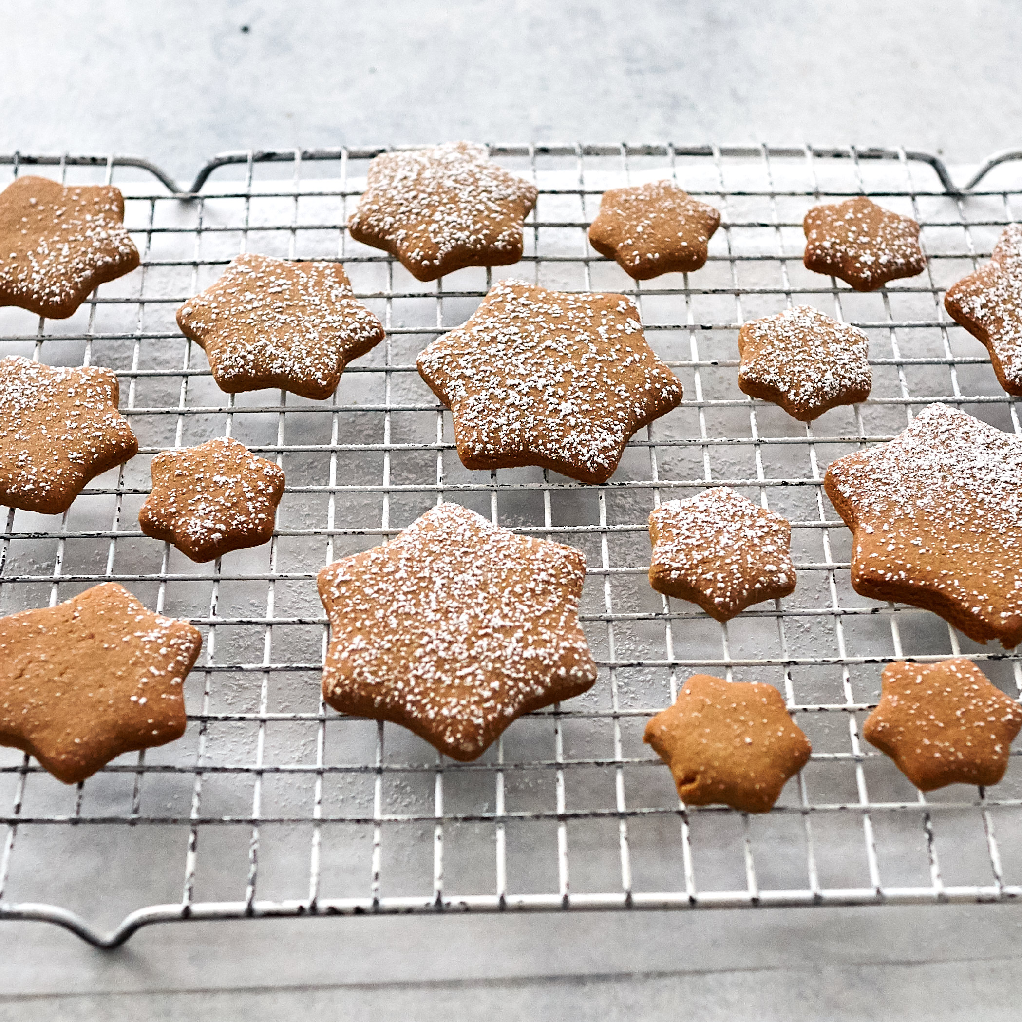 Thermomix gingerbread 1.jpg