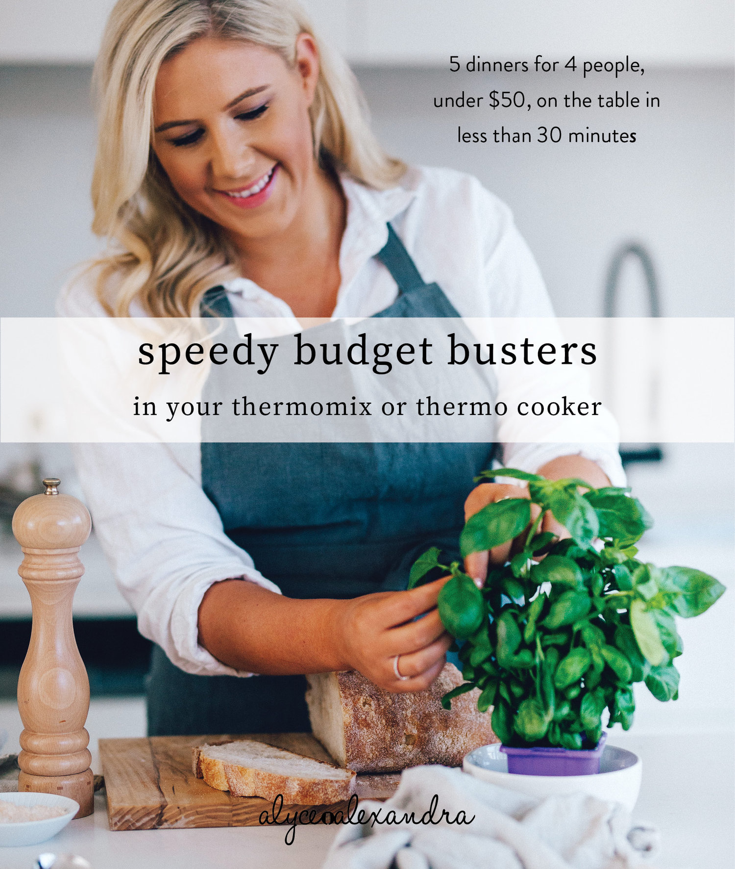 budget+busters+ebook+cover.jpg