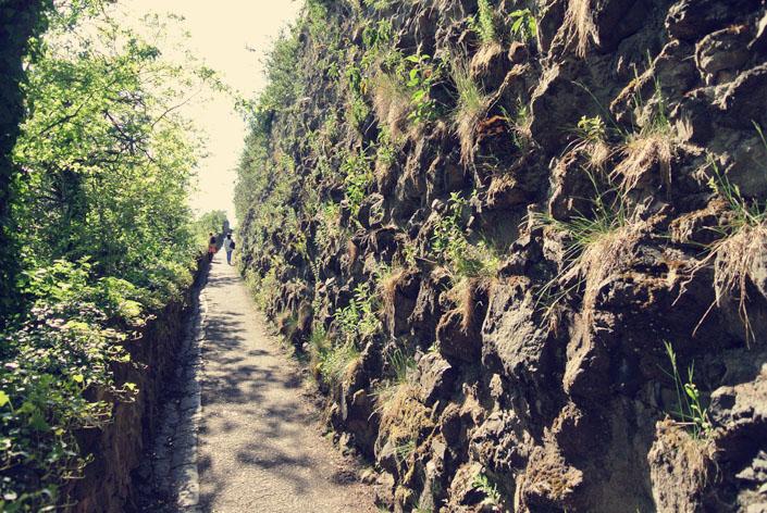 edinburgh_hike_up_to_carlton_hill_aspiring_kennedy.jpg