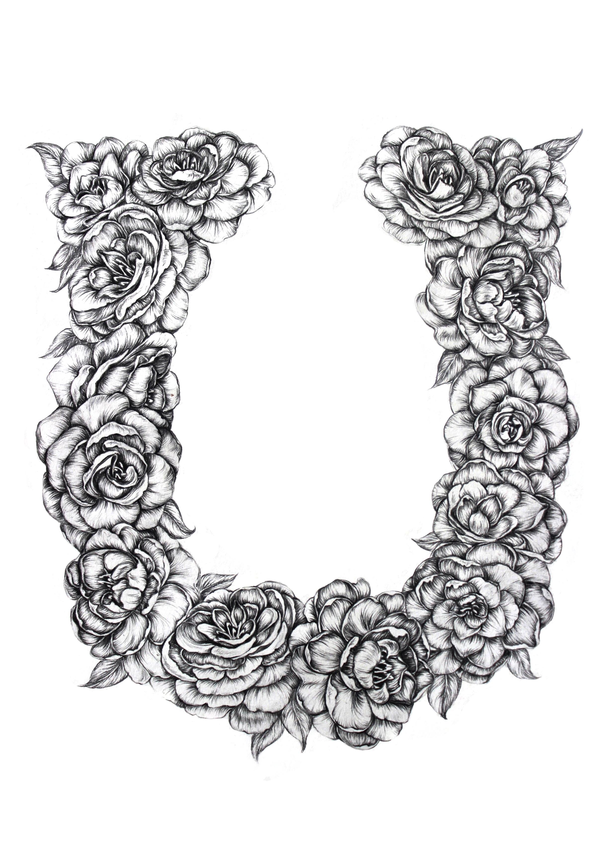 Illustration for Sophie Jo Designs