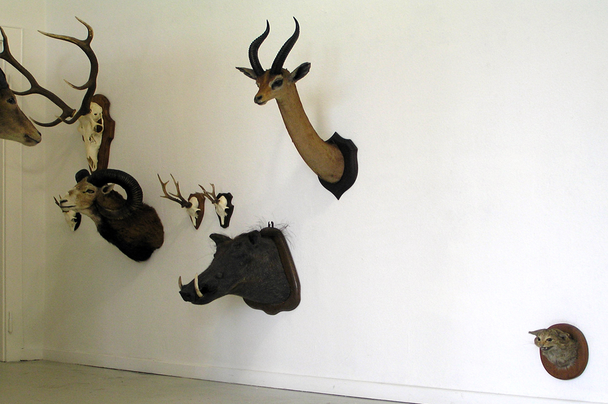 herd_installation_02.jpg