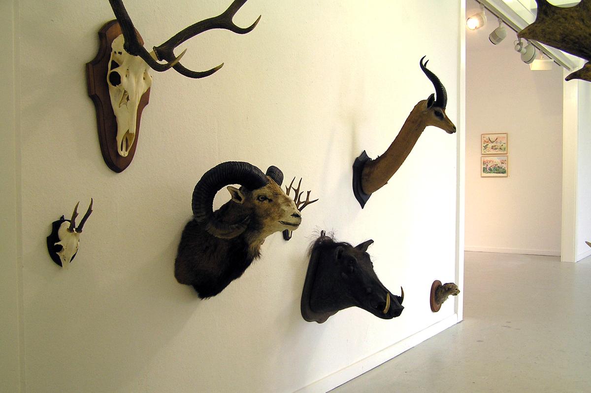 herd_installation_03.jpg