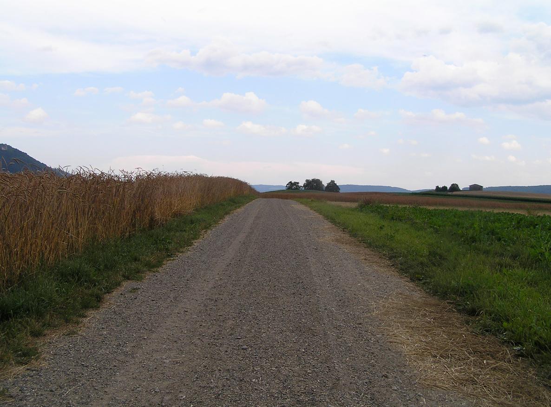 james_to_lenka_road_02.jpg