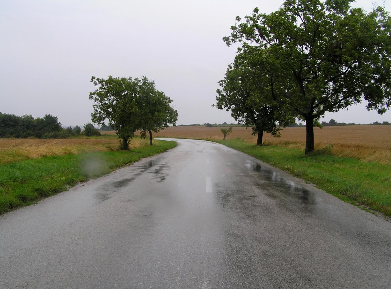 james_to_lenka_road_10.jpg