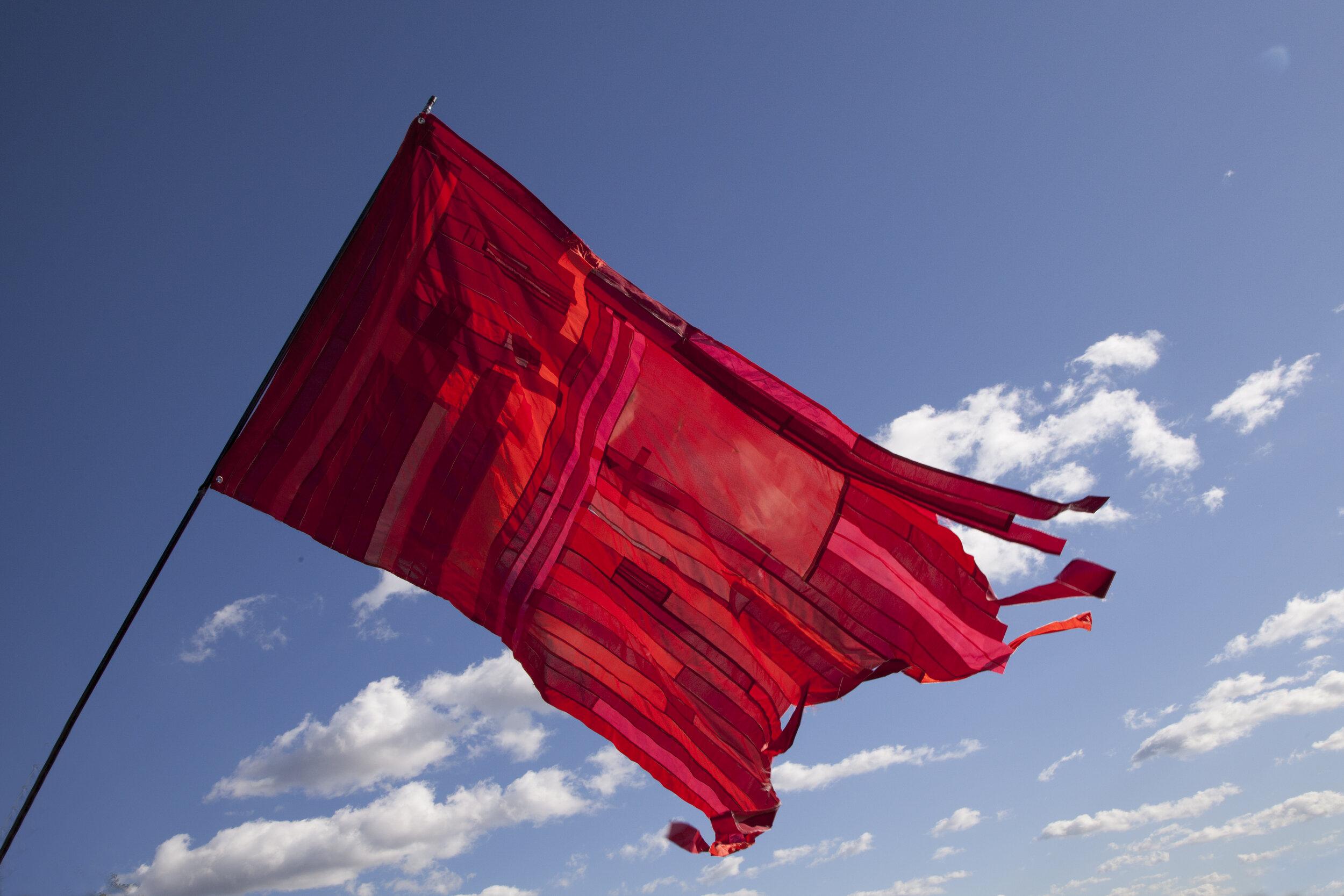 warningflag.jpg